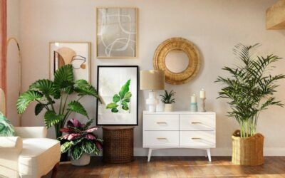 Decorative Plants to Green Your Room